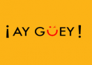 ayguey.mx